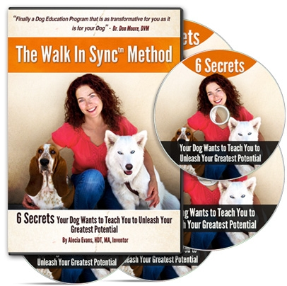 The Walk In Sync Method