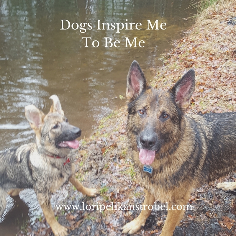 Dogs Inspire Me To Be Me