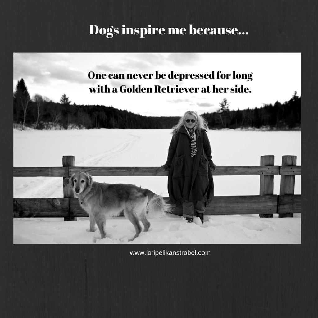 Dogs inspire me...