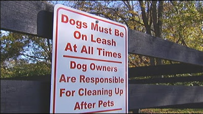 dogs-on-leash