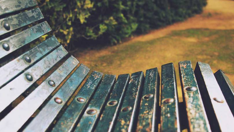 bench photo image source: Copper Beach Institute